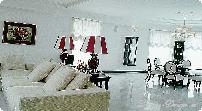 шторы фото для гостиной фото